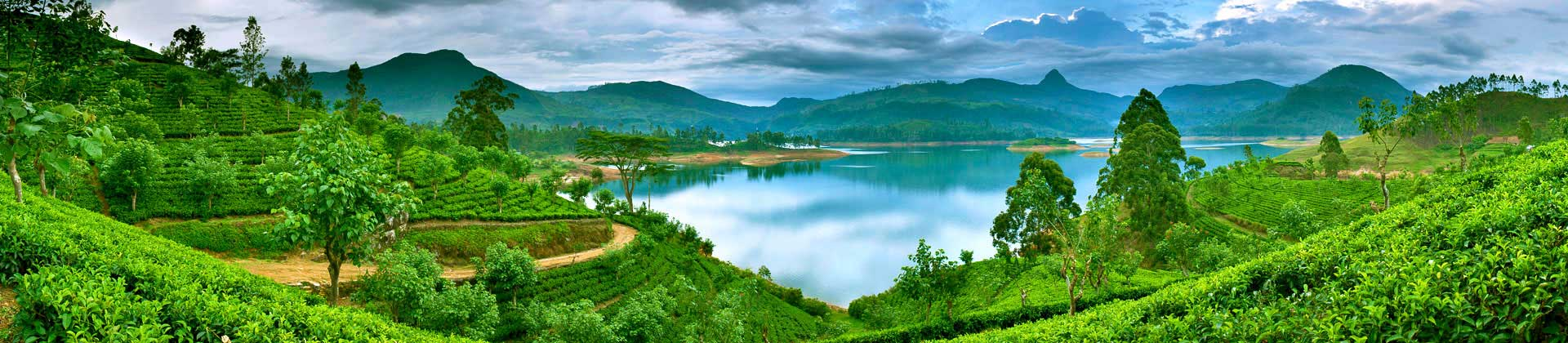 Castlereigh reservoir, in the picturesque hill country of Sri Lanka